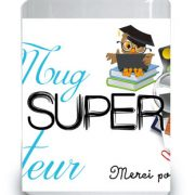 super-instituteur-photo2